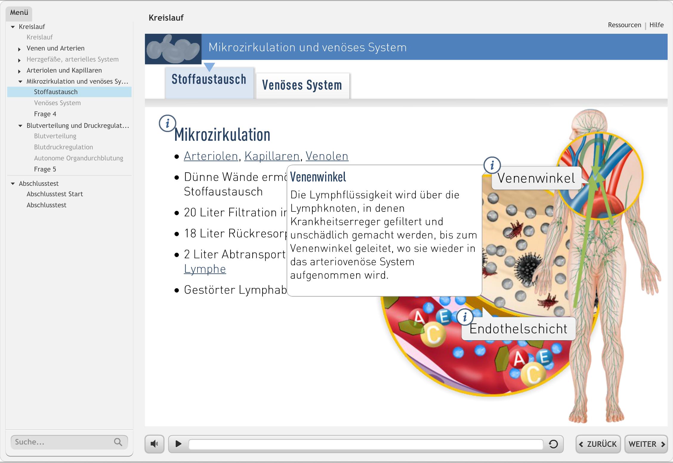 """Screenshot aus unserem Lernmodul """"Kreislauf"""""""